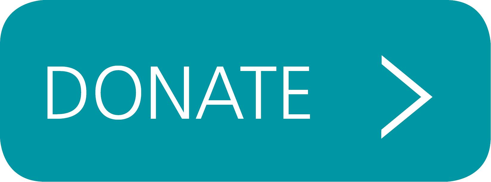 Donate Button copy